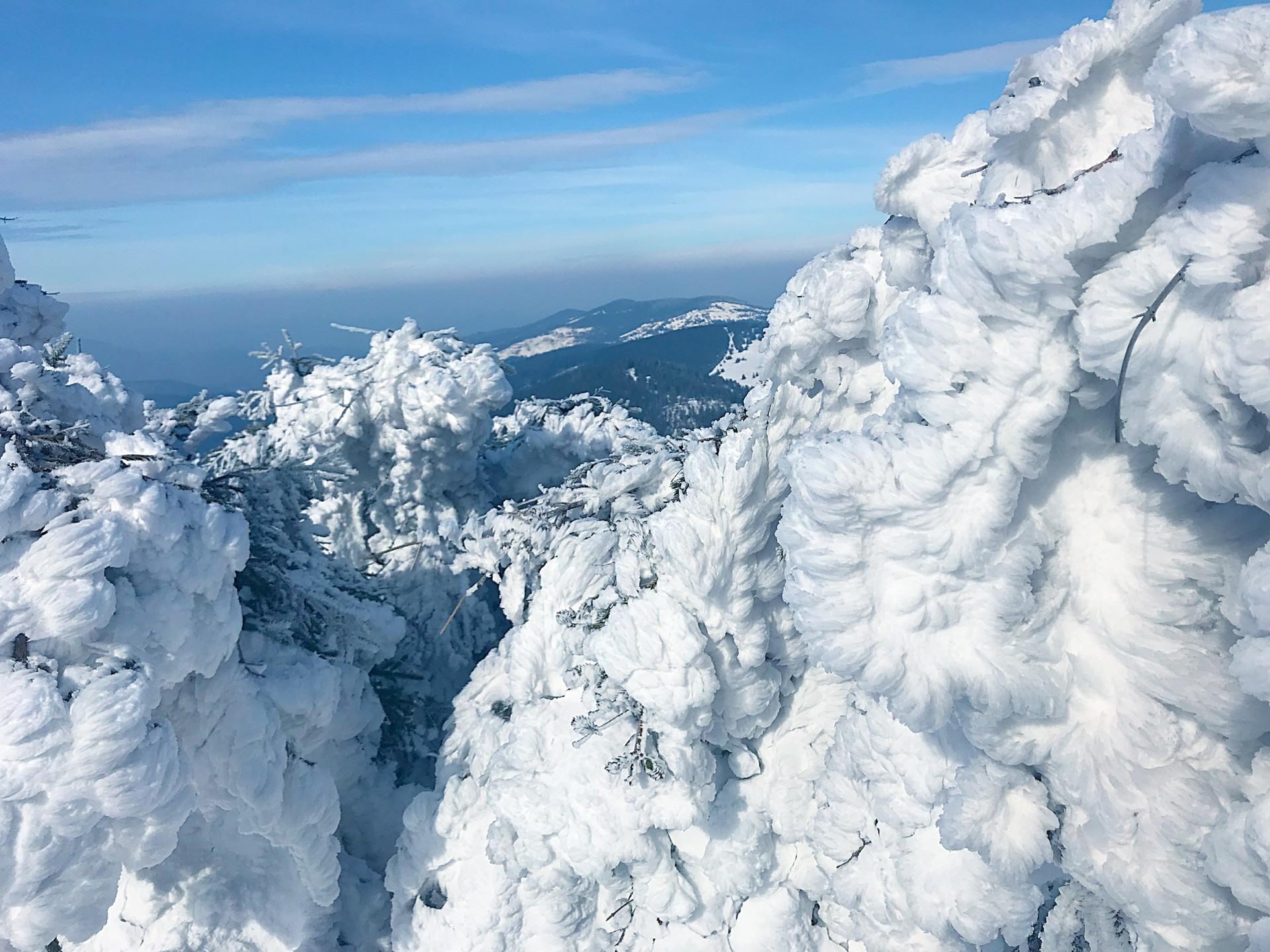 Zimowy krajobraz, Szczyrk, w pobliżu domków nad Jeziorem Żywieckim