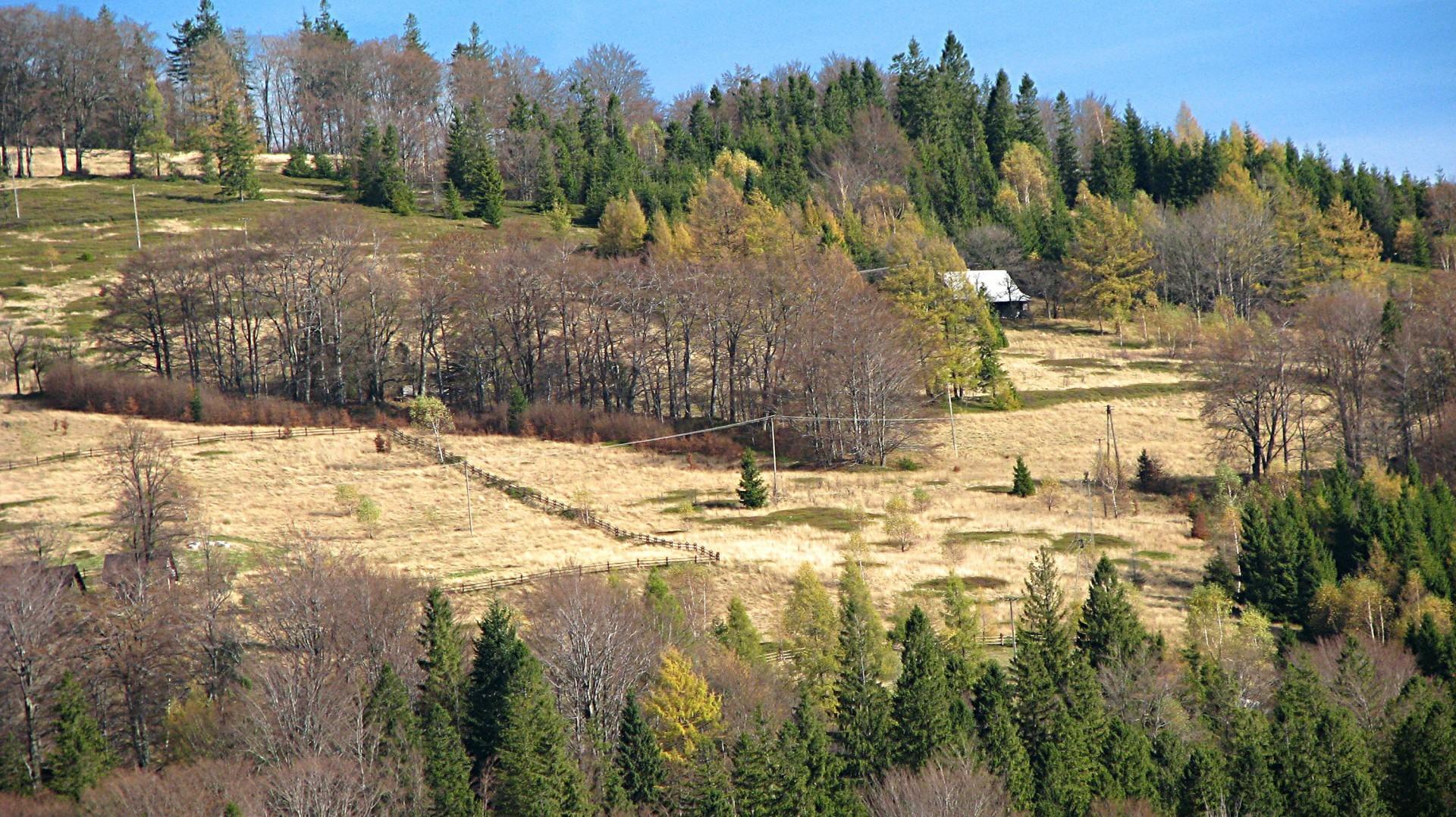 Błatnia, krajobraz ze szlaku w pobliżu domków nad Jeziorem Żywieckim